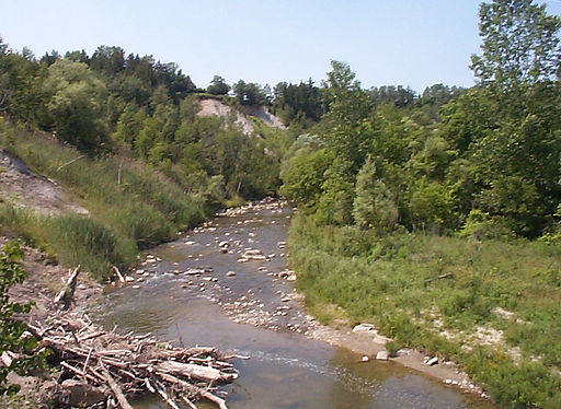 Rouge River in Wikipedia